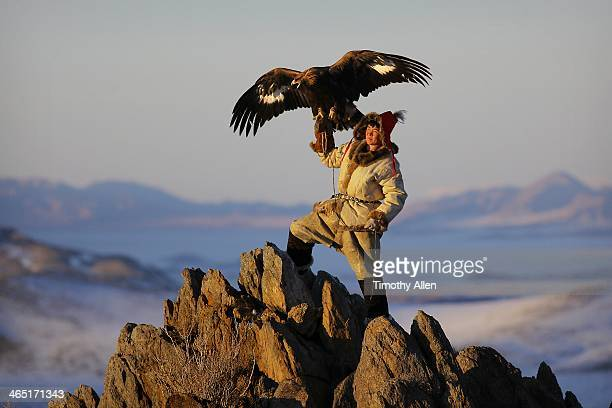 Hunter flies majestic eagle from mountain peak
