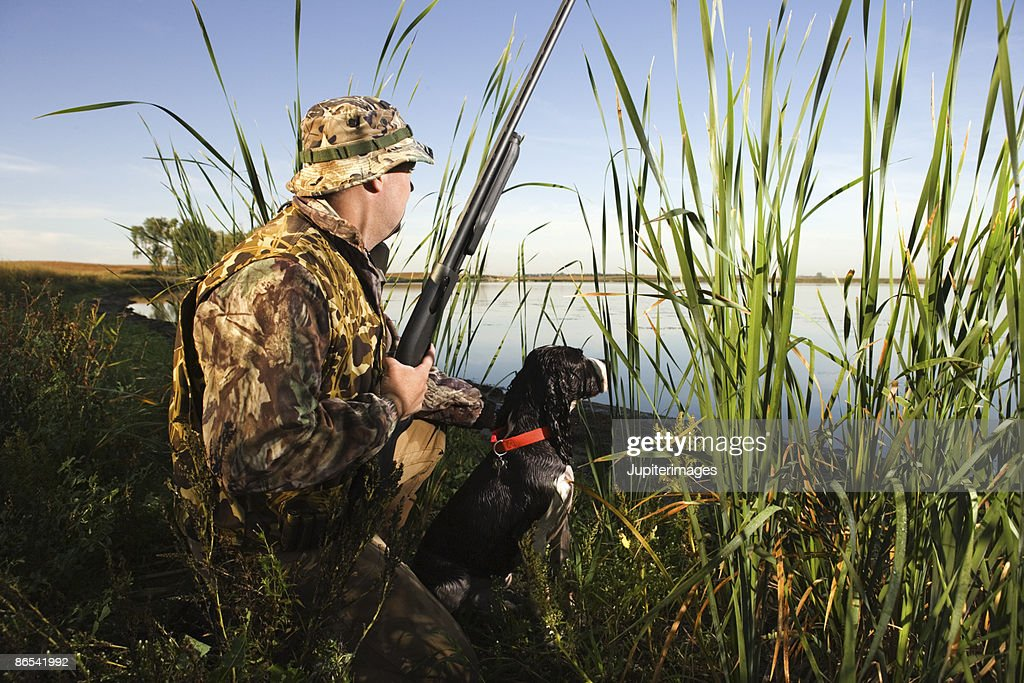 Hunter hiding in reeds with dog