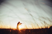 Hunter loading sniper and shooting prey in long grass in sunrise