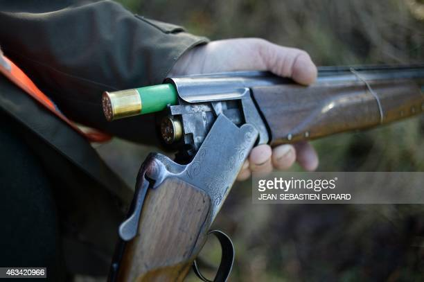 A hunter loads a cartridge in his shotgun during a big game hunting on February 14 2015 in La ChapelleGlain western France With 13 million of hunters...