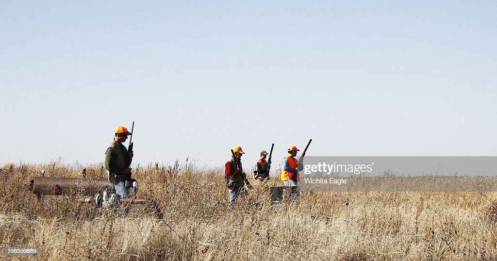Hunters work a weed patch near an irrigated field in western Kansas, November 10, 2012. Pheasant numbers were best in areas where the birds found water this summer.
