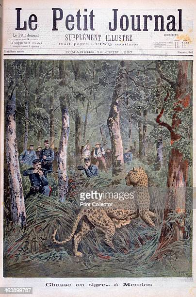 Hunting an excaped leopard Meudon Paris 1897 An illustration from Le Petit Journal 13th June 1897