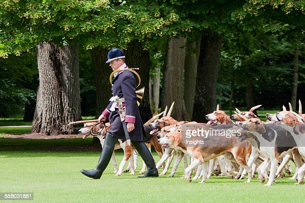 Hunting Dogs In The Park Of Chateau De Cheverny Cheverny France