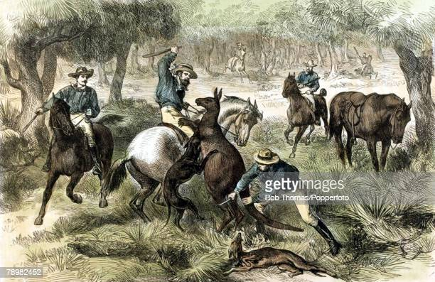 circa 1876 This illustration shows kangaroo hunting in Australia with hunters using dogs