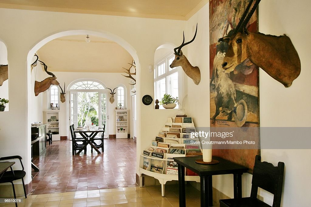 Hunting trophies hang on the walls of the living-room of Ernest Hemingway�s house at the Finca Vigia, on December 4, 2006 in Havana, Cuba. The Hemingway Finca Vigia, now turned into a museum, has been restored with joint efforts of American and Cuban scientists and historians. Between 1939 and 1960, the American writer and journalist lived for many years in Cuba. It was here where he wrote his novel The Old Man and the Sea, which earned him both the Pulitzer Prize and the Nobel Prize in Literature.