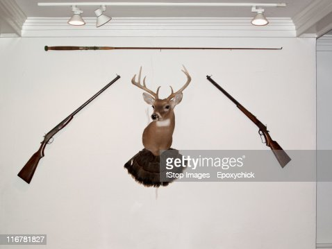 A hunting trophy in the middle of two old-fashioned rifles and a fishing rod