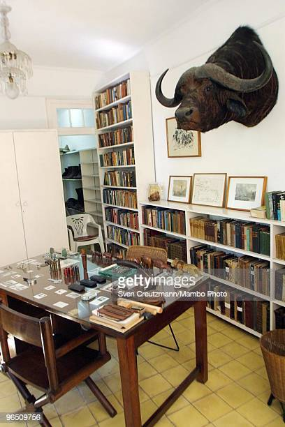 A hunting trophy of a buffalo hangs over the desk of Hemingway in the Ernest Hemingway�s house at the Finca Vigia on November 11 2002 in Havana Cuba...