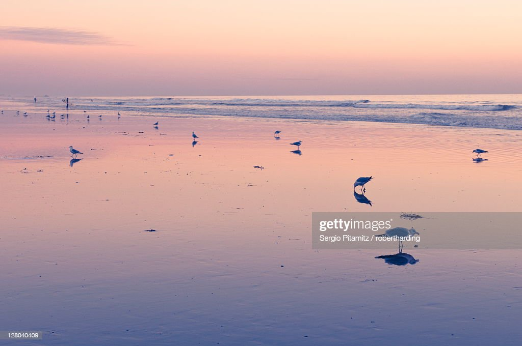 Huntington (IN) United States  city pictures gallery : Huntington Beach, California, United States of America, North America ...