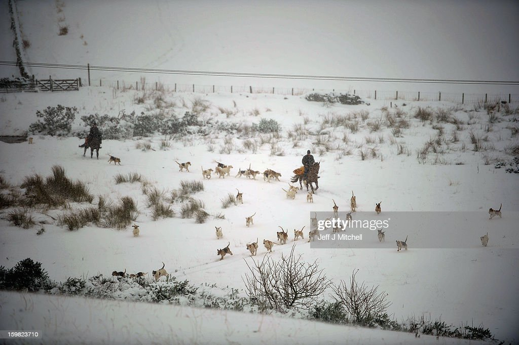 Huntmaster Tim Coulson and Victoria Walton at the Lauderdale Hunt exercise the hounds in the snow at Scarce Law on January 21, 2012 in Lauder, Scotland. Widespread snowfall is affecting most of the UK with school closures and transport disruption. The Met Office has issued a red weather warning for parts of Wales, advising against all non-essential travel as up to 30cm of snow is expected to fall in some areas today.