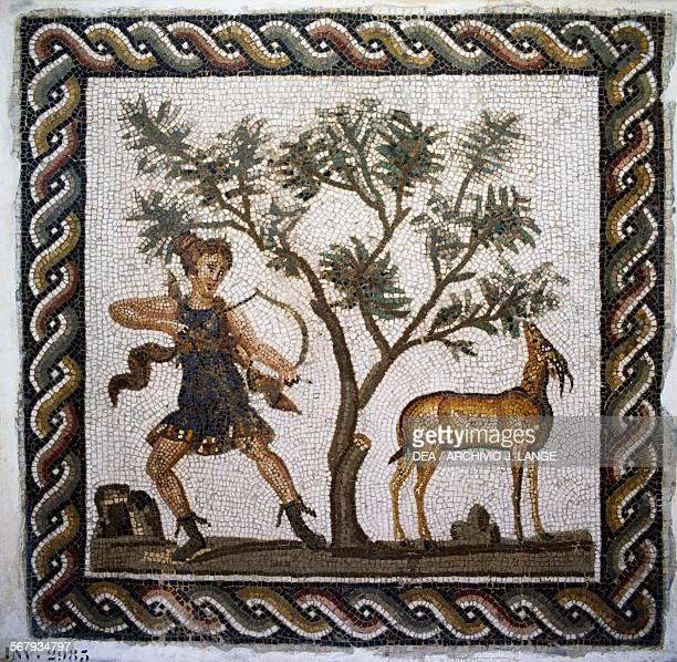 Huntress Diana mosaic from Utica Tunisia Roman civilisation 2nd century AD Tunis Musée National Du Bardo