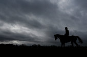 Hurricane Fly on the gallops at Cheltenham racecourse on March 08 2015 in Cheltenham England