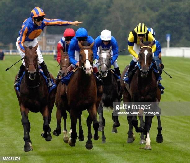 Hurricane Run ridden by Christophe Soumillon wins The King George VI and Queen Elizabeth Diamond Stakes at Ascot racecourse