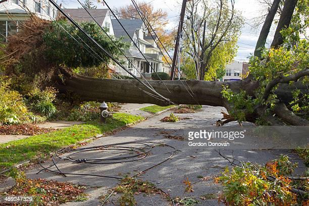 Hurricane Sandy Aftermath on Staten Island
