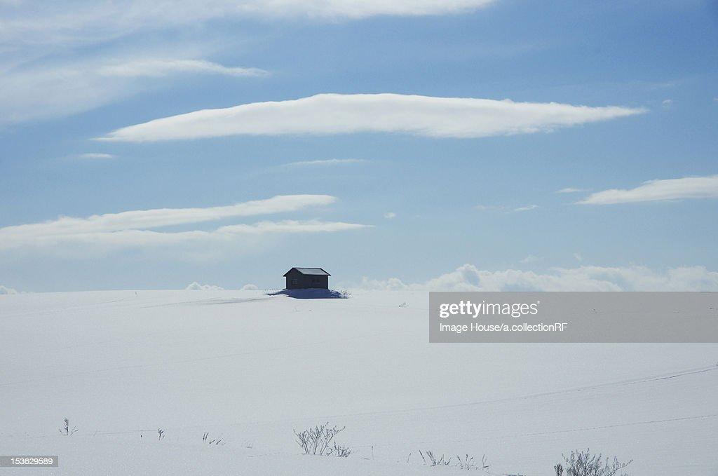 Hut In Snow Field