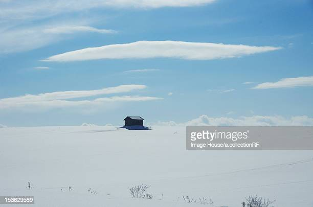 Hut In Snow Field