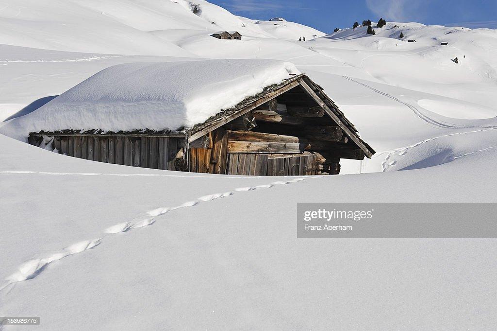 Hut in snowy landscape, Austria : Stock Photo