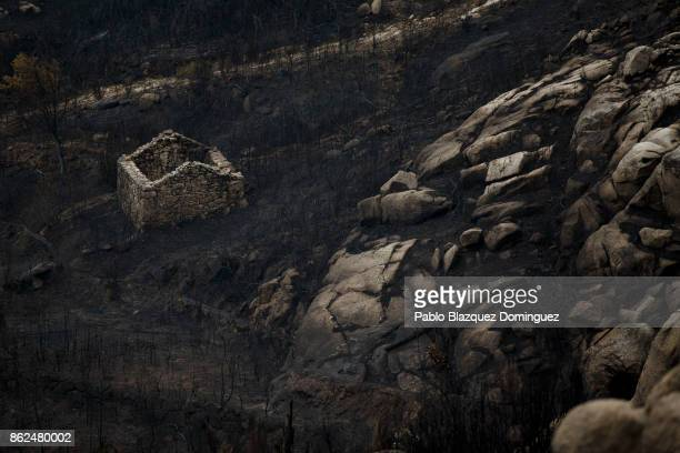 A hut is surrounded of ash near Vouzela on October 17 2017 in Viseu region Portugal At least 41 people have died in fires in Portugal and 4 others in...