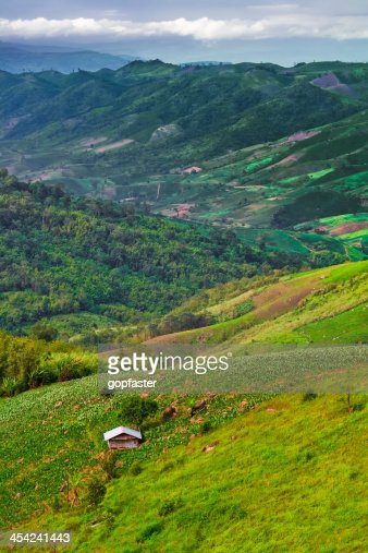 Hut on the hill. : Stock Photo