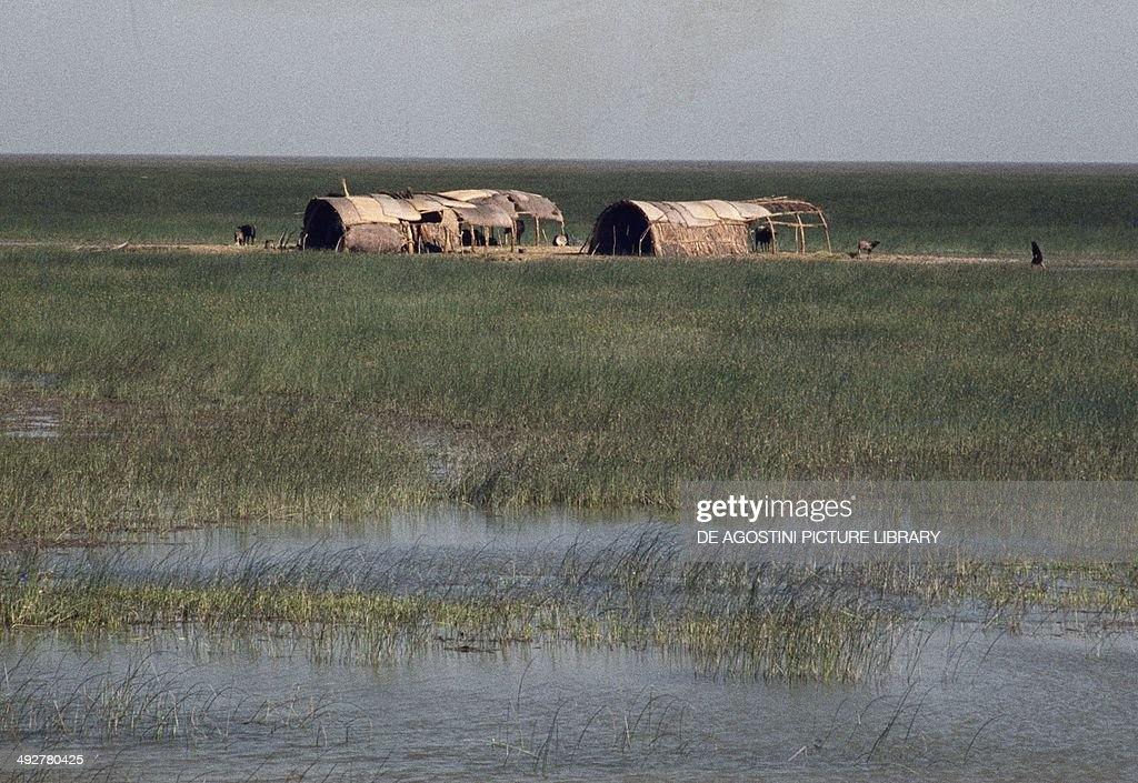 Huts in the vicinity of AlQurna junction of the Tigris and Euphrates rivers Iraq