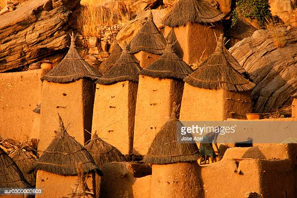 Huts of the Mali Dogon tribe, Village of Youdiou, Africa.