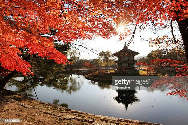 Hyangwonjeong pavilion in autunno