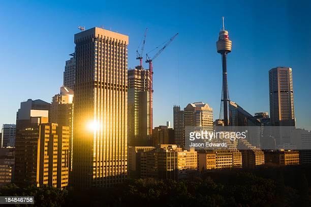 Dawn illuminates the Sydney skyline overlooking Hyde Park.