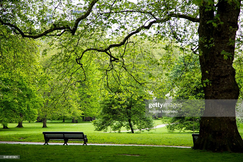 Hyde Park London Stock Photo | Getty Images