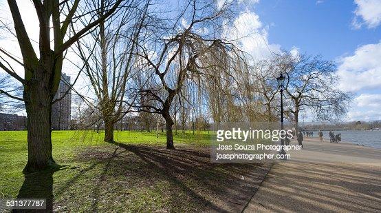 Hyde Park on winter