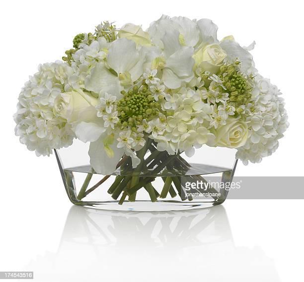 Hidrângea e ramo de Orquídea em um fundo branco