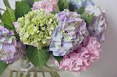 Hydrangea bouquet. Autumn wedding flower decoration