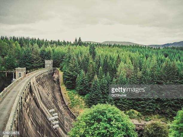 Hydroelectric power station und Dam mit Pinien