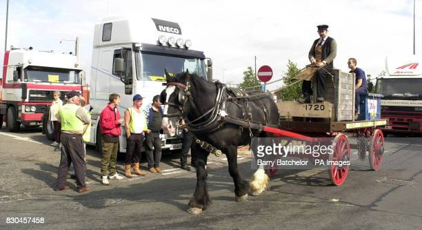 Ian Cryer drives his horse 'Truman' past the lorry blockade and pickets at Avonmouth Docks after he was employed by local company Speedy Hire Centres...