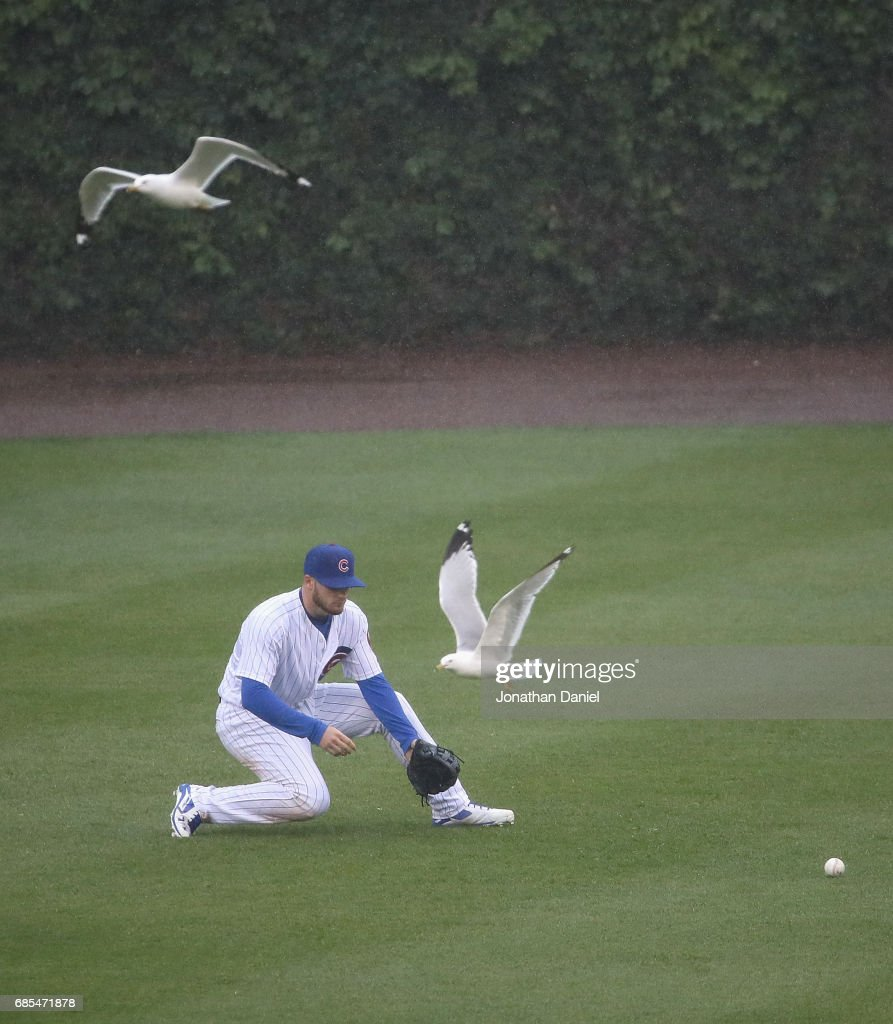 Ian Happ #8 of the Chicago Cubs fields a ball as seagulls fly past against the Milwaukee Brewers in the 5th inning at Wrigley Field on May 19, 2017 in Chicago, Illinois.