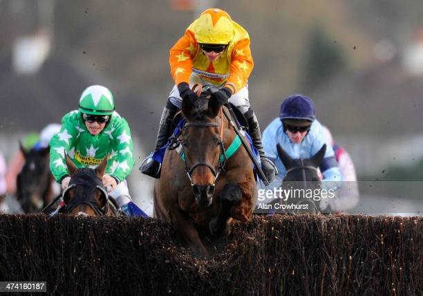 Ian Popham riding Bally Legend clear the last to win The BetBriight Steeple Chase at Kempton Park racecourse on February 22 2014 in Sunbury England