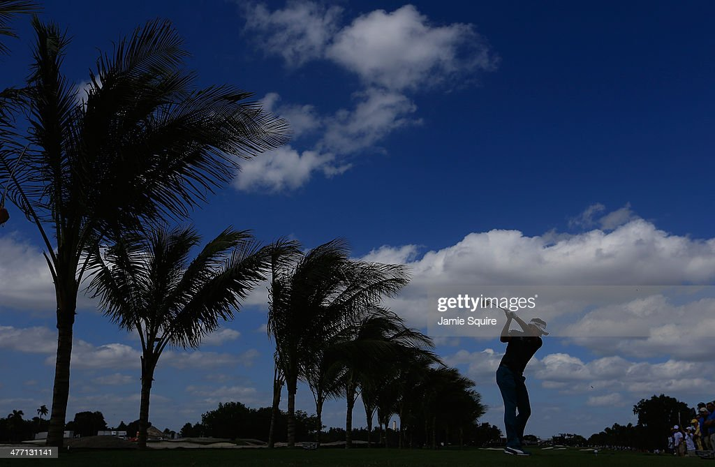 <a gi-track='captionPersonalityLinkClicked' href=/galleries/search?phrase=Ian+Poulter&family=editorial&specificpeople=171444 ng-click='$event.stopPropagation()'>Ian Poulter</a> of England hits his tee shot on the second hole during the second round of the World Golf Championships-Cadillac Championship at Trump National Doral on March 7, 2014 in Doral, Florida.