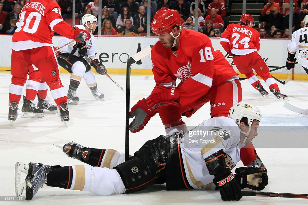 <a gi-track='captionPersonalityLinkClicked' href=/galleries/search?phrase=Ian+White&family=editorial&specificpeople=581742 ng-click='$event.stopPropagation()'>Ian White</a> #18 of the Detroit Red Wings checks <a gi-track='captionPersonalityLinkClicked' href=/galleries/search?phrase=Matt+Beleskey&family=editorial&specificpeople=570471 ng-click='$event.stopPropagation()'>Matt Beleskey</a> #39 of the Anaheim Ducks during a NHL game on February 15, 2013 at Joe Louis Arena in Detroit, Michigan.