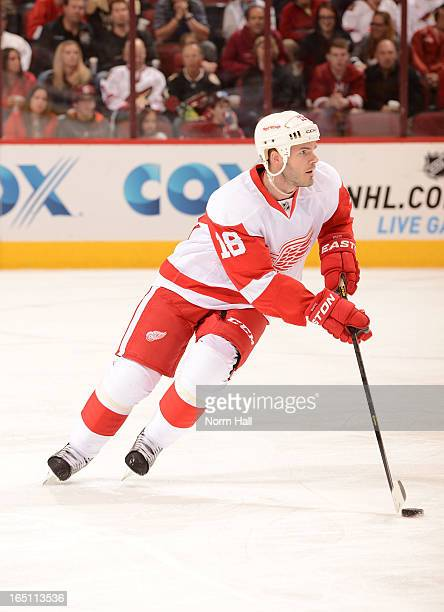 Ian White of the Detroit Red Wings skates with the puck against the Phoenix Coyotes at Jobingcom Arena on March 25 2013 in Glendale Arizona