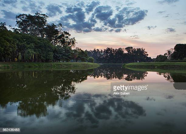 Sunset in Ibirapuera park