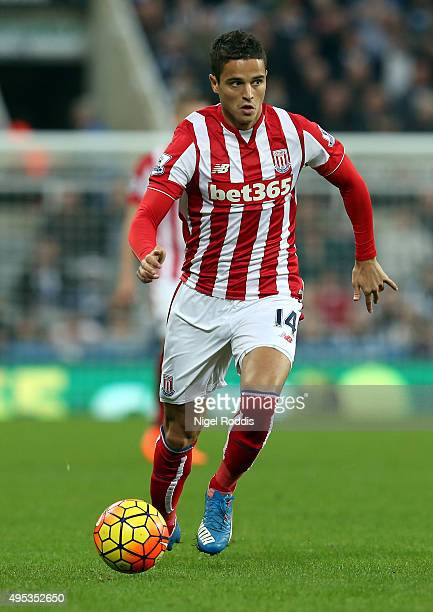 Ibrahim Afellay of Stoke City during the Barclays Premier League match between Newcastle United and Stoke City at St James' Park on October 31 2015...