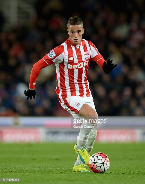 Ibrahim Afellay of Stoke City during the Barclays Premier League match between Stoke City and Tottenham Hotspur at the Britannia Stadium on April 18...