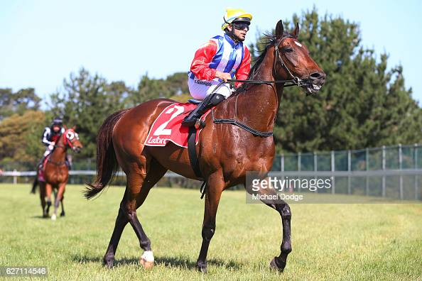 Ibrahim Gundogdu returns to scale on Go And Get Rich after winning United Commercial Projects BM58 Handicap at Mornington Racecourse on December 02...