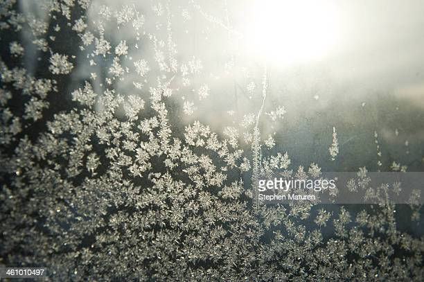 Ice crystals form on the inside of a window as the area deals with record breaking freezing weather January 6 2014 in Minneapolis Minnesota A large...