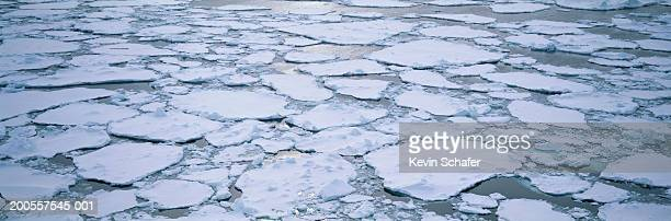 Ice floating in Ross sea