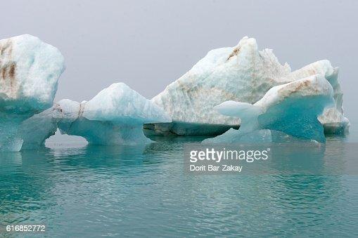Ice floe at Monacobreen glacier, Liefdefjorden Fjord, Svalbard, Artic Ocean : Stock Photo