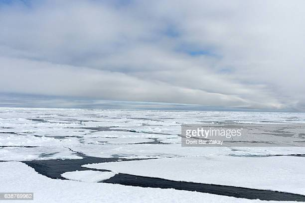 Ice floe in the Arctic Ocean - Svalbard - Spitsbergen, Norway
