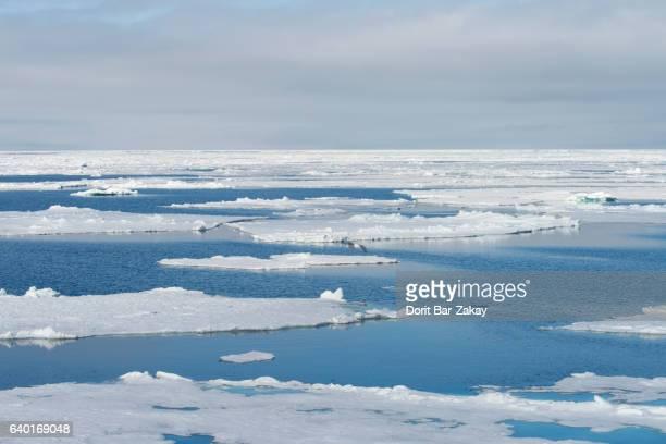 Ice floe in the Arctic Ocean - Svalbard - Spitsbergen, Norway