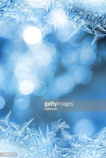 Ice フラワーフレームガラス