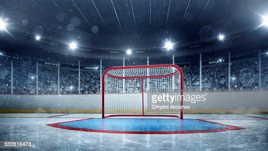 Ice hockey gates