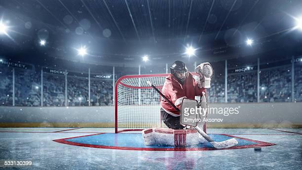 Ice Hockey Goalie