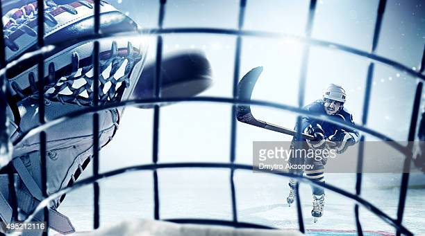 Ice Hockey Goalie view